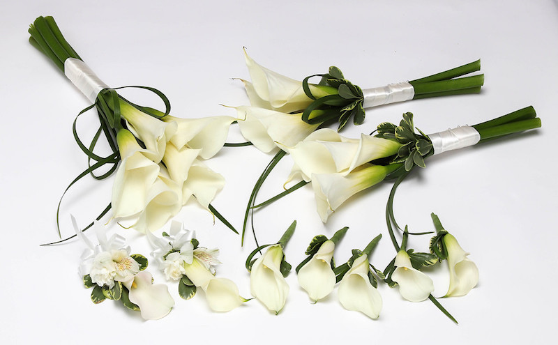 ALWAYS ELEGANT CALLA LILY PACKAGE PICTURE