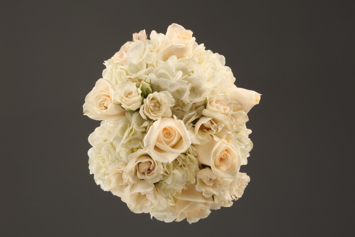 white rose & hydrangea
